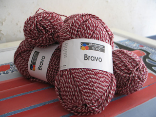 Bravo_small2