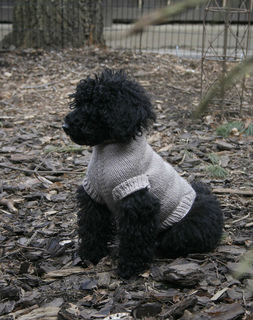 Ravelry: Perfect Fit Dog &Cat Sweater -Pat Generatr TopDown pattern by Je...