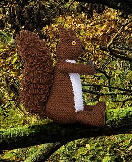 Squirrel_in_oak_tree_small2