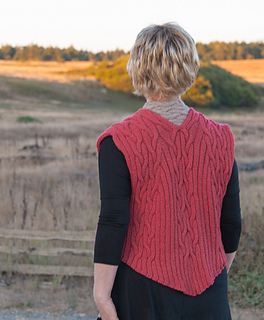 Red_vest_cat_back-22_small2