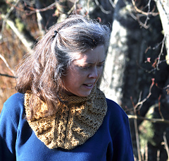 Shibui_cowl_downward_rav_small