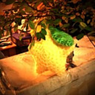 Amigurumi Paopu Fruit : Ravelry: Amigurumi Paopu Fruit pattern by violentorchid