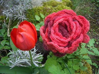 Cranberriesscarf05_small2
