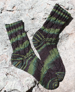 Turtletrackssocks_small2