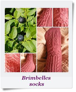 Brimbelles_small2