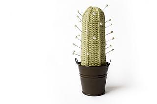Cactus3_small2