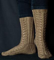 Terra-firma-sock_small