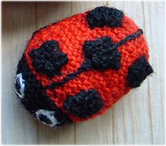 Ladybird_small