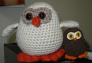 3036_owls_small2