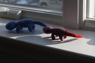 Lizards_small2