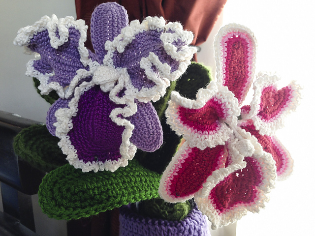 http://www.ravelry.com/patterns/library/cattleya-orchid-crochet-flower