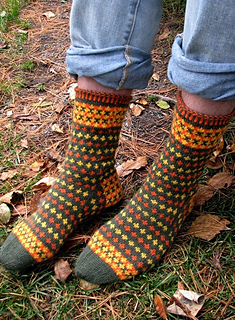 Fall_foliage_socks_main_image_1--re-sized_small2