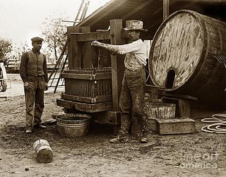 Making_wine__circa_1920s__california__2__small2