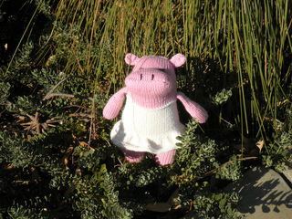 Pink_hippo_front_small2