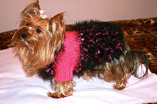 Misia_dog_sweater_small2