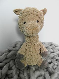 Alpaca1_small2
