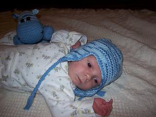 Gideon_hippo_small2