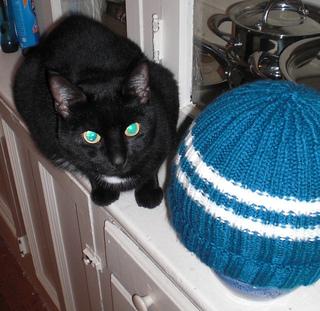 Tiny_hat_small2