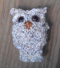 Happy_owl2_small