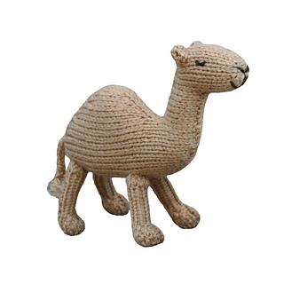 Camel_square_small2