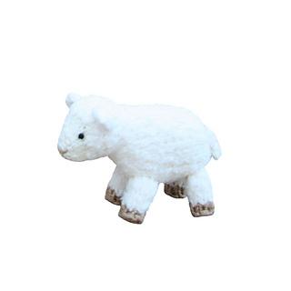 Sheep_square_small2