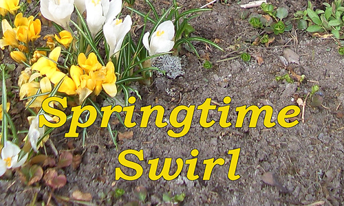 Springtime1-med_medium