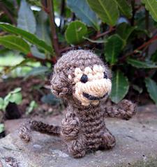 Mini_monkey_06_small