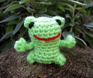 Mini_frog_01_small2