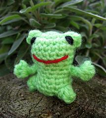 Mini_frog_02_small
