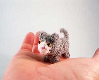 Mini_cats_03_small2
