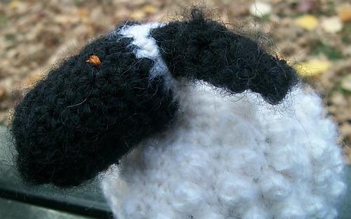 Chubby_sheep_close_up_profile_medium