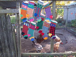 Cascade_stocking_and_chickens1_small2