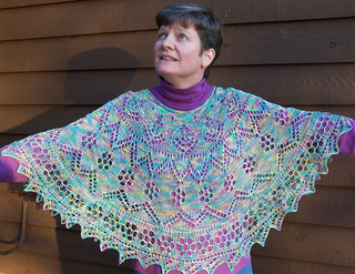 Poncho_on_spreadout_small2