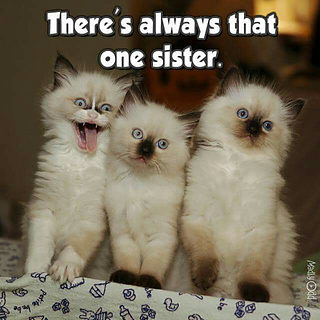 That_one_sister_small2