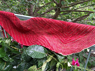 Red_shawl3_small2