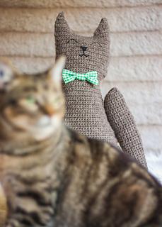 Flat_cat_photobomb_small2
