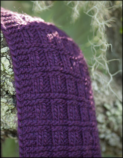 _111027_plum_scarf_pc081861_small2