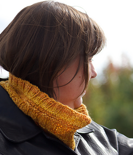 Yellow_cowl1_small2