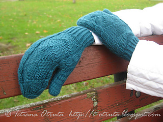 _img_3325_sprucemittens_small2