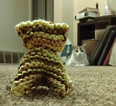 Imag5907cattoyrav_small