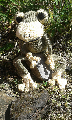 Fred_the_frog__2__medium
