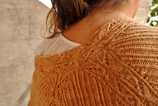 Shawl_2_crp_small2