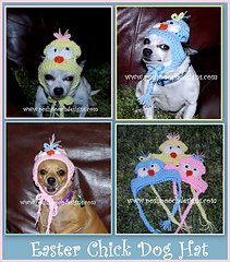 Easter_chick_dog_hat_small