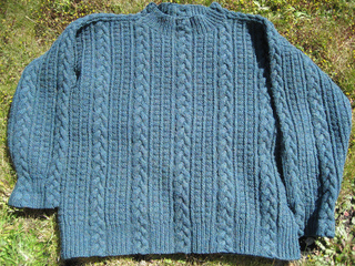 Finished_sweaters_3_jan_2010_013_small2