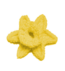Daffodil_image_small