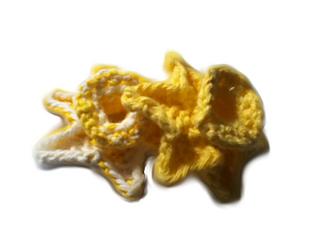 Daffodil_edit_small2