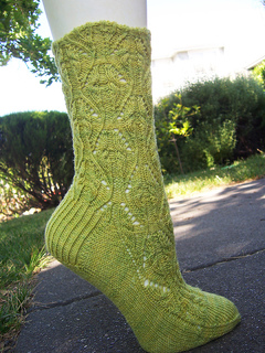 Verdsockcover_small2