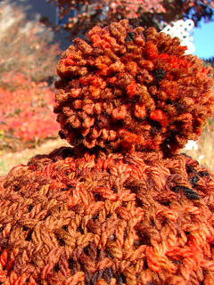 Autumnoakpompom_small2