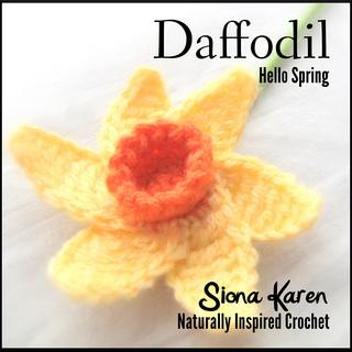 Daffodil_sq_small2