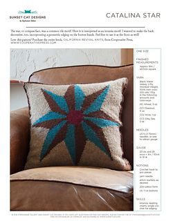 Cover_pillow_small2